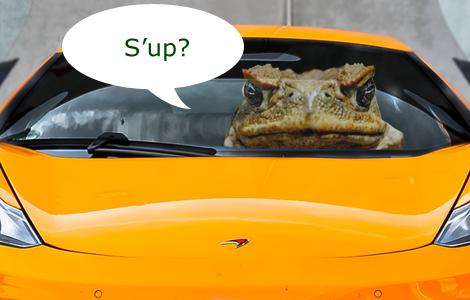 Toad Car!