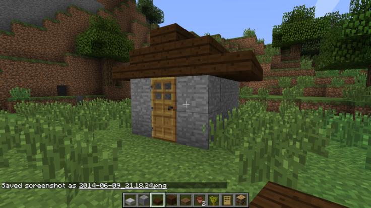 Minecraft Hut